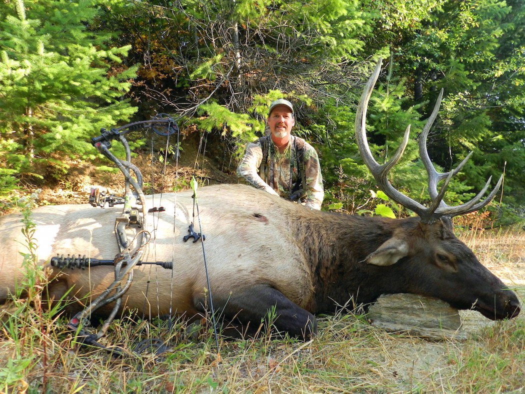 5 Places to Find Elk in Pressured Easy-to-Access Areas | Big