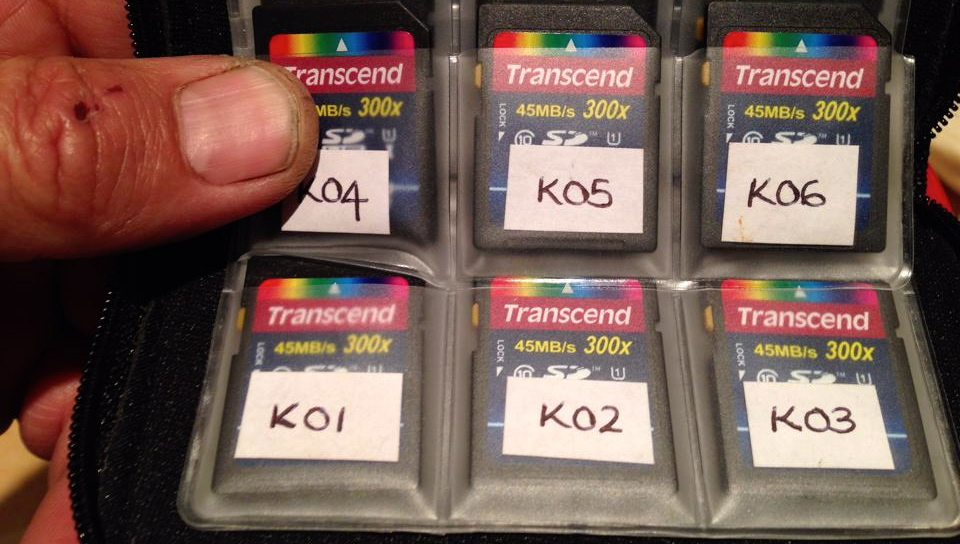 SD Cards Labelled.