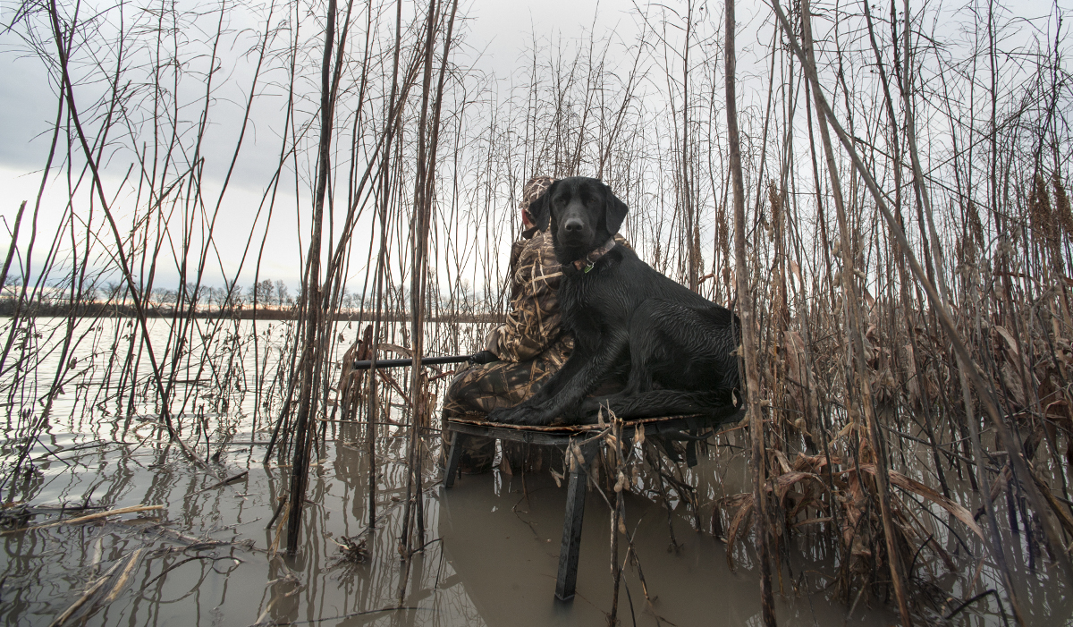 10 Waterfowling Items You Don't Need But Shouldn't Be Without