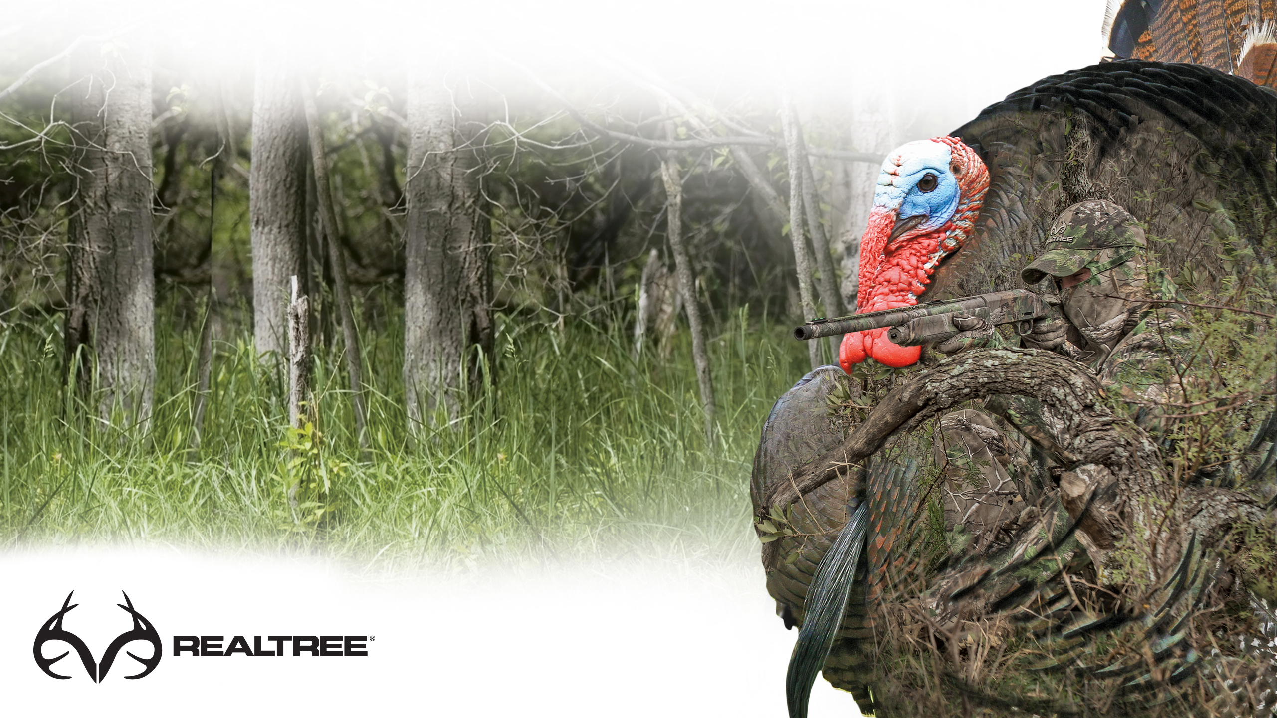 Wallpapers Realtree