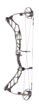 Limited Edition ELITE Realtree Original Impulse Bow  Preview