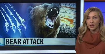 Teen Attacked by Grizzly While Shed Hunting