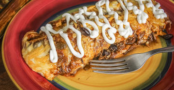Slow cooked legs and thighs from your wild turkey  make the perfect enchilada filling.