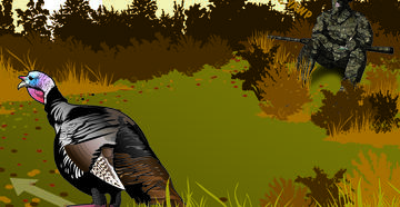 Use these calling tips for wild turkeys this fall. © Pete Sucheski illustration