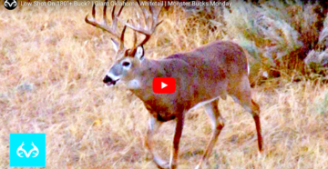 Monster Bucks: A Low Hit on a 180-Inch Oklahoma Deer?