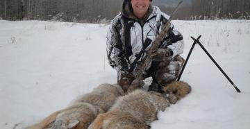 Ever hunted coyotes in the snow? (c) Fred Eichler photo