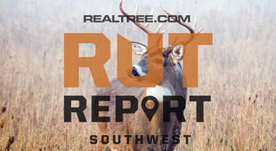 Southwest Rut Report: The Rut Is Hit or Miss Throughout the Region
