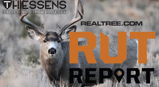 Southwest Rut Report: Expect a Great Weekend of Deer Hunting
