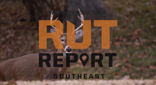 Southeast Rut Report: Select Areas in Alabama, Florida, Mississippi and Louisiana Continue to Produce Rut Activity