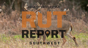 Southwest Rut Report: The Rut Is Winding Down