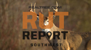 Southwest Rut Report: The Rut and Deer Season Is Now Over