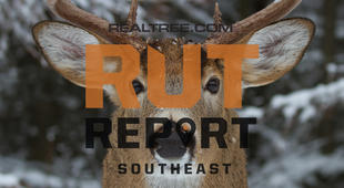 Southeast Rut Report: Small Pockets of Rut Activity in Louisiana and Mississippi and Good Action in Alabama