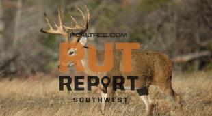Southwest Rut Report: Drought Causing Deer to Hit Water Holes and Bait