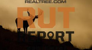 Southwest Rut Report: The Rut Is on Fire in Texas