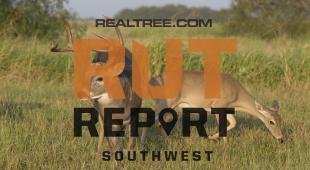 Southwest Rut Report: The Bucks Are Cruising in Some States