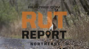 Northeast Rut Report: The Rut Action Is Spotty Throughout the Region