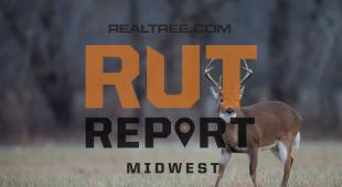Midwest Rut Report: It's Time to Be in the Deer Woods