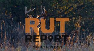 Southwest Rut Report: Conditions Are Starting to Get Better