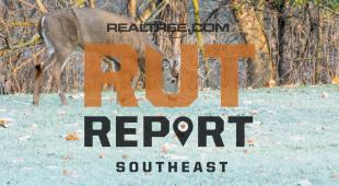 Southeast Rut Report: The Rut Is Primed to Bust Open in the Northern Half of the Region