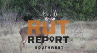 Southwestern Rut Report: Unseasonable Weather Across the Region Produces Varying Impacts