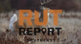 Southeast Rut Report: Mature Bucks Are Now at Peak Chasing in Five States