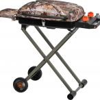 Game Winner® Realtree Xtra® 2-Burner Propane Hunter's Grill