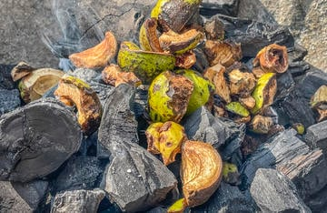 Toss a handful of hickory nut cuttings from a squirrel onto the coals for extra hickory BBQ flavor.