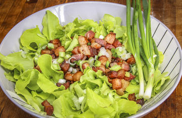 Leafy greens and spring onions from the garden combine with hot bacon grease and crispy bacon bits to make this classic Southern and Appalachian salad