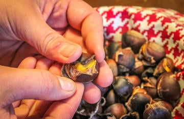 Warm, freshly-roasted chestnuts are always a favorite fall and winter snack.
