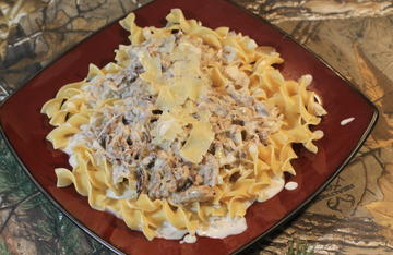 Serve the squirrel over egg noodles and top with shaved parmesan cheese.