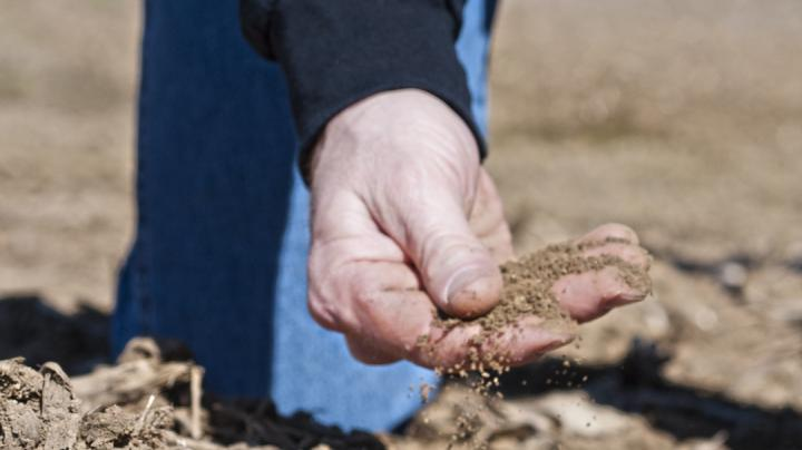 How to Take Food Plot Soil Samples Preview Image