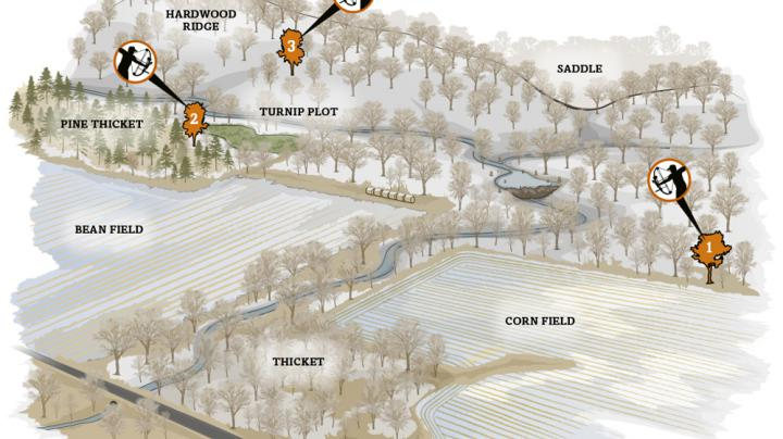The Ultimate Whitetail Plan 4: The Late Season Preview Image