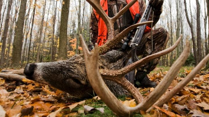 Realtree's Ready for Deer Season Quiz Preview Image