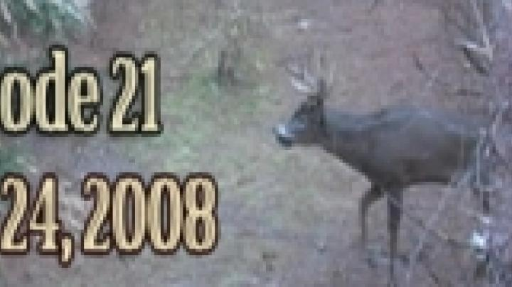 MW21: Big Bucks Tagged in Wisconsin Preview Image