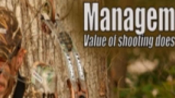 Value of shooting does Preview Image