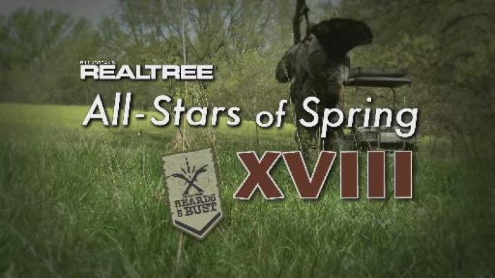 All Stars of Spring XVIII Preview Image