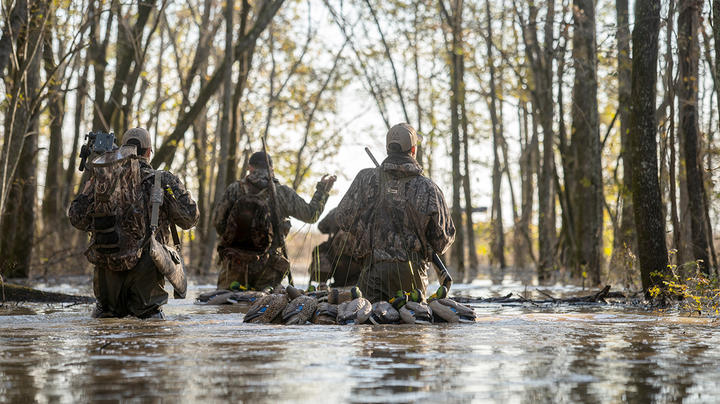 Score Waterfowling Wins on Public Land Preview Image