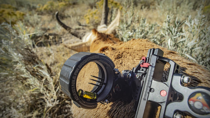 How to Bowhunt Pronghorn Antelope Preview Image