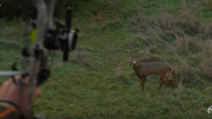 Red Arrow's Kip Campbell Tags Rutting Iowa Buck Preview Image