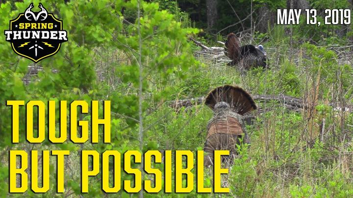 Spring Thunder: Tough Late-Season Gobblers Preview Image