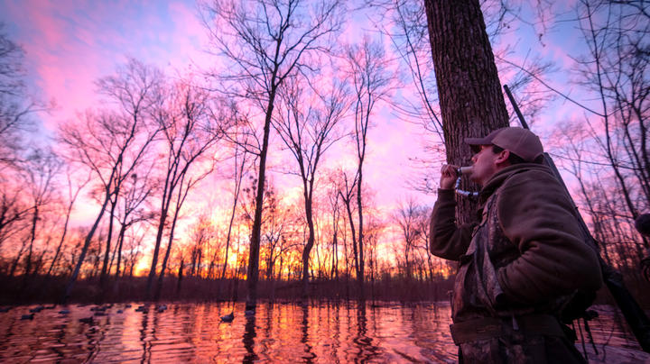 20 Duck Hunting Wishes for the New Year Preview Image
