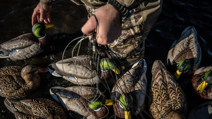 How to Screw Up Your Duck and Goose Decoys Preview Image