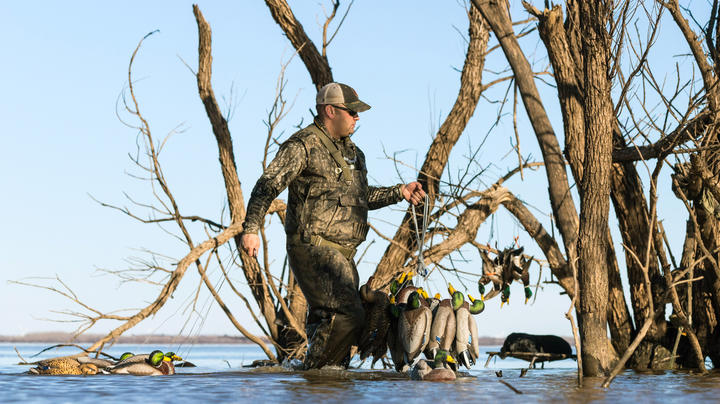 4 Tough Duck Hunting Decisions Preview Image