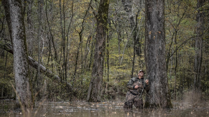 Why Your Duck Season Has Sucked So Far Preview Image