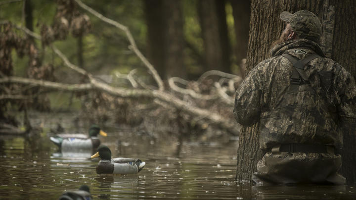 Waterfowling Notes Bring Affirmation, Surprises Preview Image