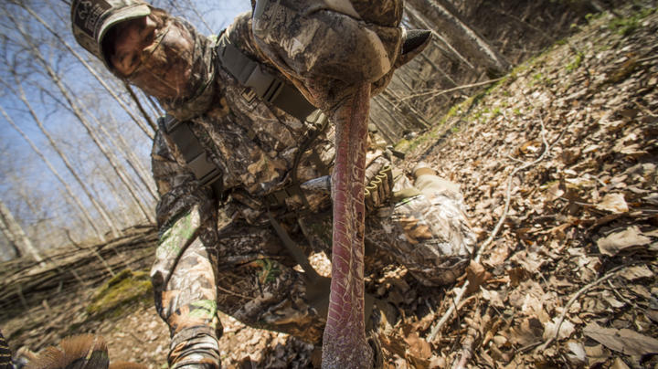 Why Turkey Hunters Love Gobbler Spurs Preview Image
