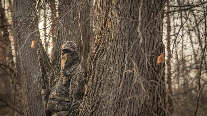 Waterfowl Action Slow in Mississippi Flyway Preview Image
