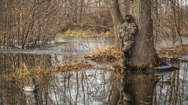 What Makes a Good Green Timber Duck Hole? Preview Image