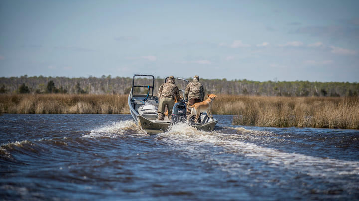 Hunters Finding Good Action in Unseasonably Cold Mississippi Flyway Preview Image