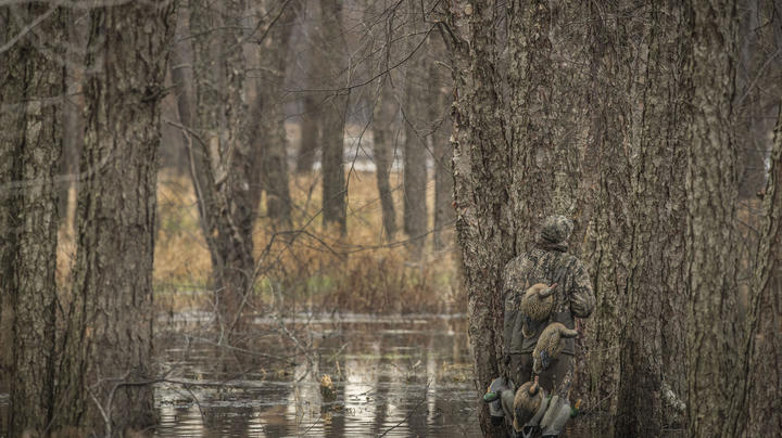How Much Cover Does Your Duck Blind Need? Preview Image